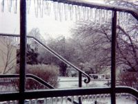 January 14, 1978 Ice Storm - Syosset, New York.  Icicles fringe an iron railing.