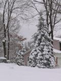 Deep snow cover in Smithtown, Long Island, March 1, 2005
